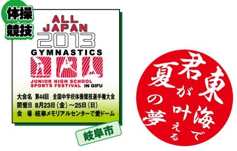 2013全国中学体操